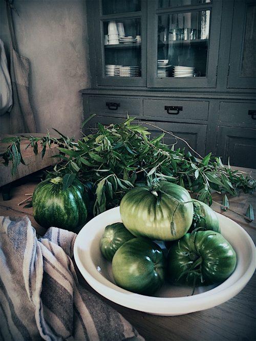tomates vertes pour la confiture