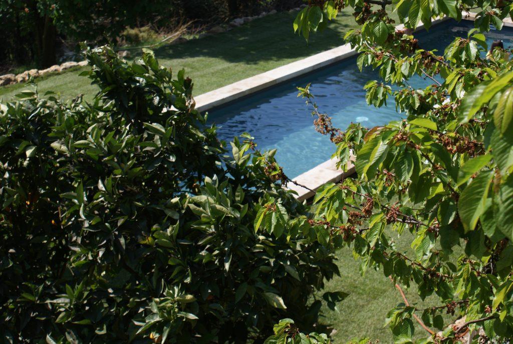 bassin de nage design